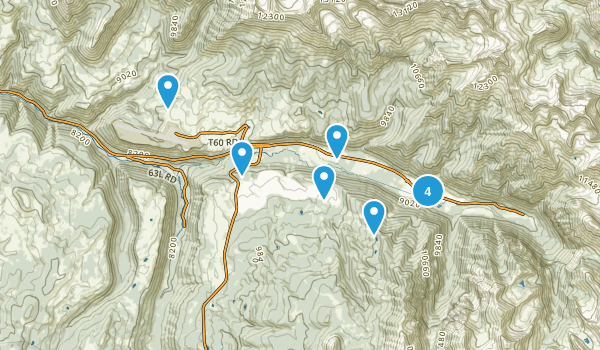 Telluride, Colorado Horseback Riding Map