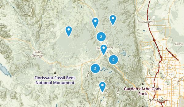 Woodland Park, Colorado Forest Map