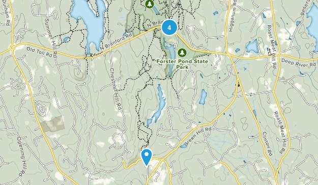 Killingworth, Connecticut Forest Map