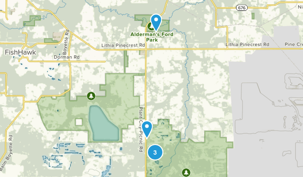 Lithia, Florida Forest Map