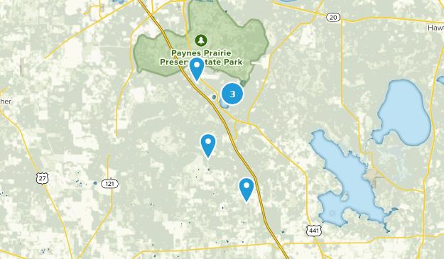 Best Forest Trails Near Micanopy Florida Alltrails