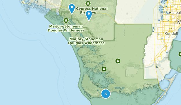 Ochopee, Florida Forest Map