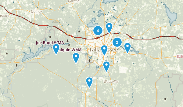 Tallahassee, Florida Dogs On Leash Map