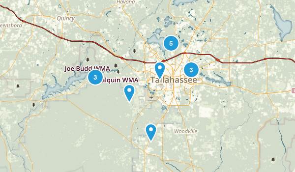 Tallahassee, Florida Forest Map