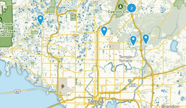 Best Forest Trails near Tampa, Florida | AllTrails