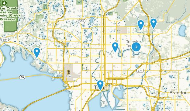 Beste Flusswege in der Nähe von Tampa, Florida | AllTrails