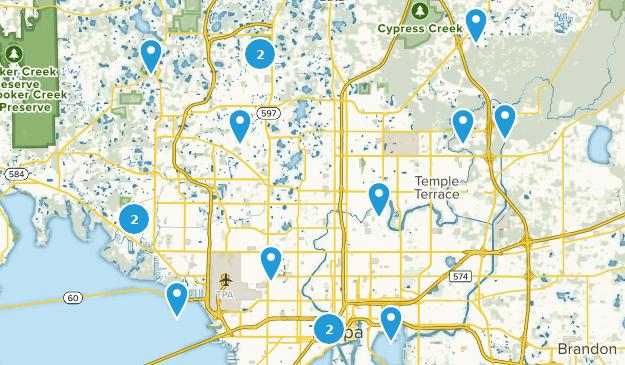 Beste Lauf-Routen in der Nähe von Tampa, Florida | AllTrails