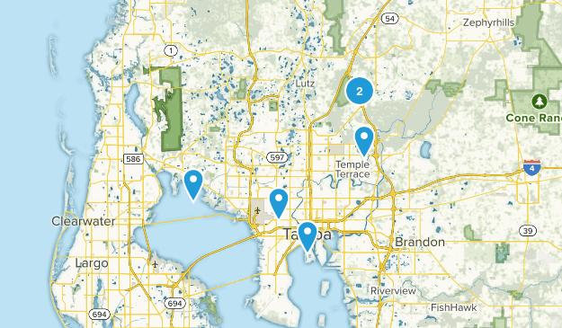 Tampa, Florida Wild Flowers Map