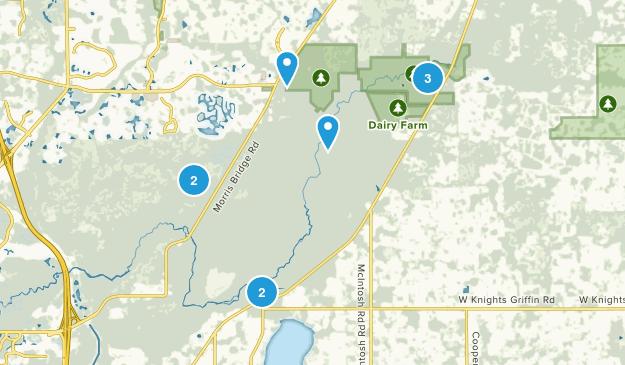 Thonotosassa, Florida Birding Map