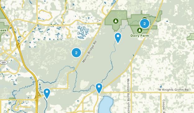 Thonotosassa, Florida Trail Running Map