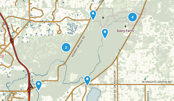 Thonotosassa, Florida Walking Map