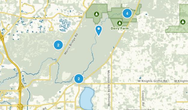 Thonotosassa, Florida Wildlife Map