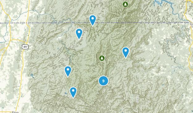 Epworth, Georgia Dogs On Leash Map