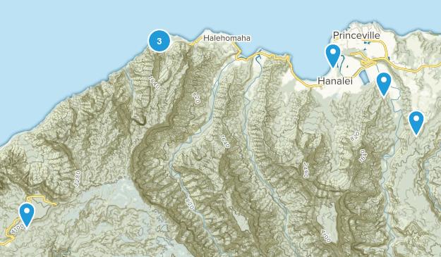 Hanalei, Hawaii Forest Map