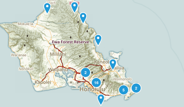 Honolulu, Hawaii Dogs On Leash Map