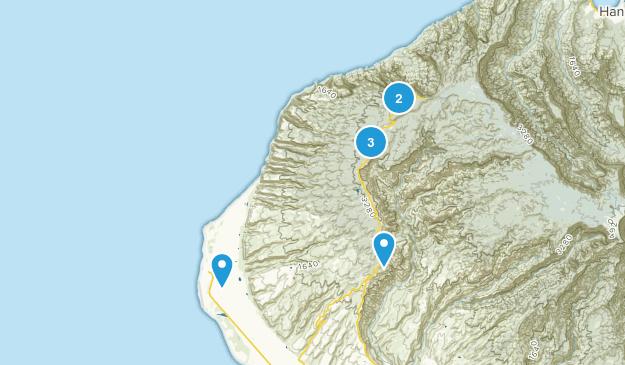 Kekaha, Hawaii No Dogs Map