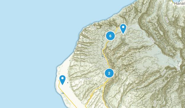 Kekaha, Hawaii Wild Flowers Map
