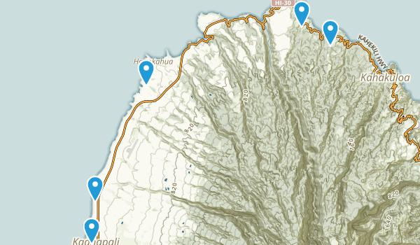 Lahaina, Hawaii Birding Map