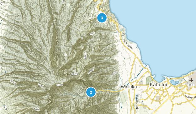 Wailuku, Hawaii Forest Map