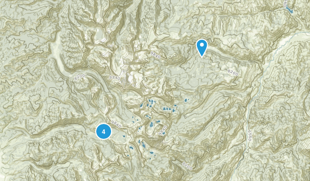 Clayton, Idaho Nature Trips Map
