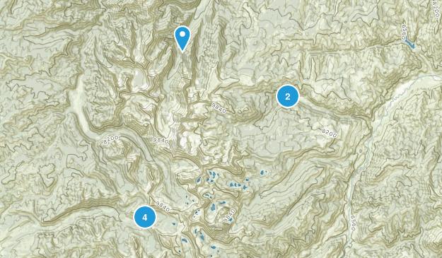 Clayton, Idaho Walking Map