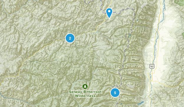 Elk Summit, Idaho Forest Map