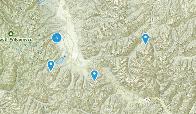 Galena, Idaho Birding Map