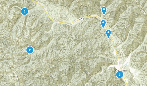 Ketchum, Idaho Forest Map