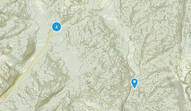 Mc Call, Idaho Wild Flowers Map