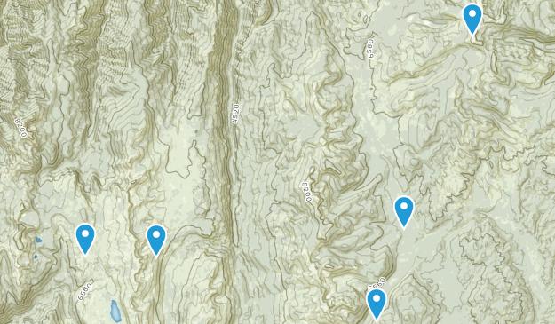 Riggins, Idaho Birding Map