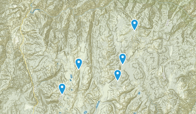 Riggins, Idaho Dog Friendly Map