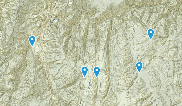 Riggins, Idaho Forest Map