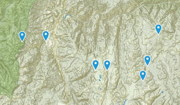 Riggins, Idaho Wild Flowers Map