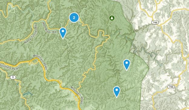 Campton, Kentucky Forest Map