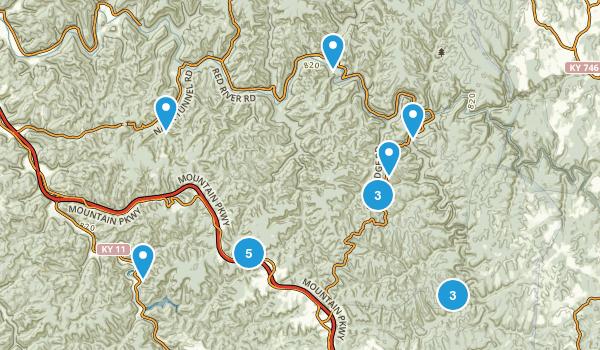 Pine Ridge, Kentucky Forest Map