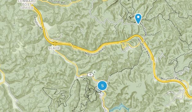 Slade, Kentucky Bird Watching Map