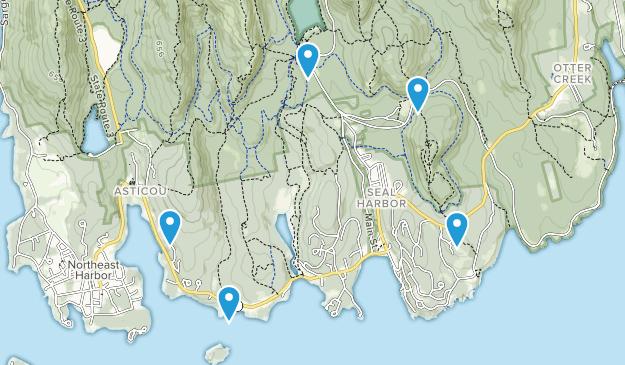 Seal Harbor, Maine Wild Flowers Map