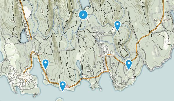 Seal Harbor, Maine Wildlife Map