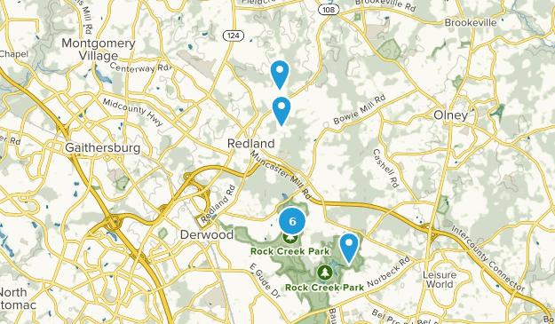 Derwood, Maryland Bird Watching Map
