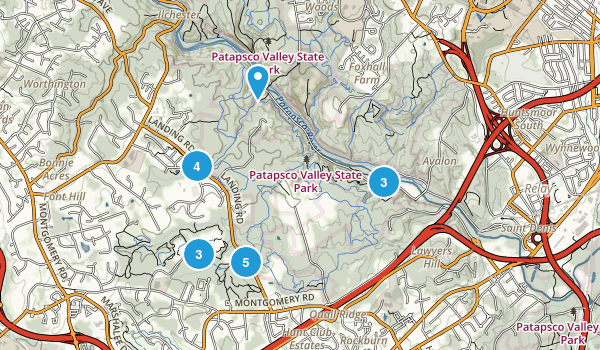 Ilchester, Maryland Forest Map