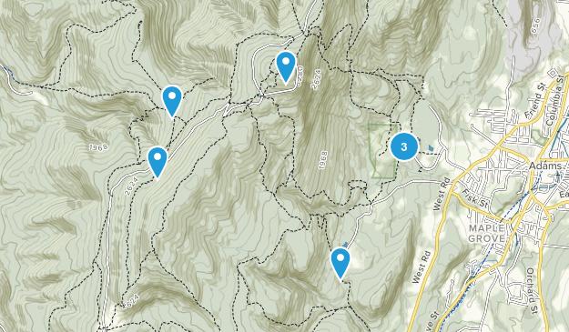 Adams, Massachusetts Forest Map