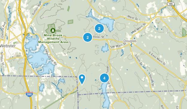 Douglas, Massachusetts Forest Map