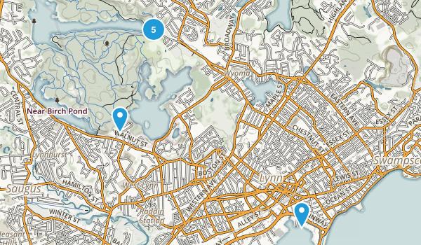 Lynn, Massachusetts Birding Map