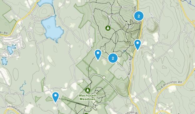Princeton, Massachusetts Wild Flowers Map