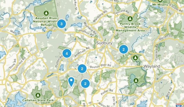 Sudbury, Massachusetts Forest Map