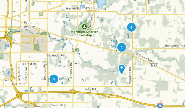 Okemos, Michigan Forest Map