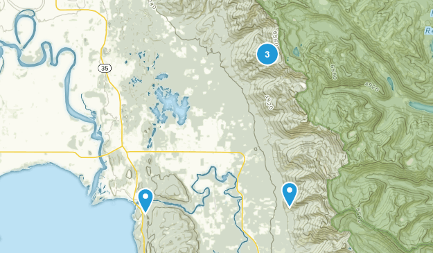 Bigfork, Montana Dogs On Leash Map