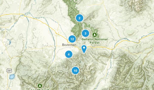 Bozeman, Montana Forest Map