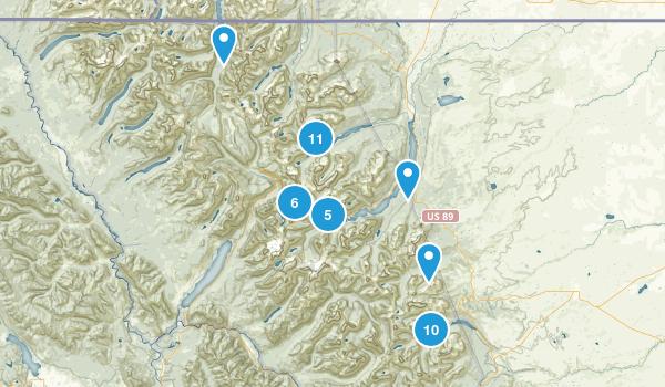 East Glacier Park, Montana No Dogs Map