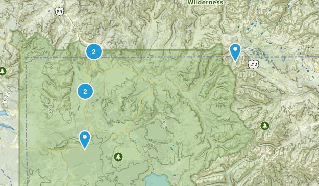 Gardiner, Montana Forest Map